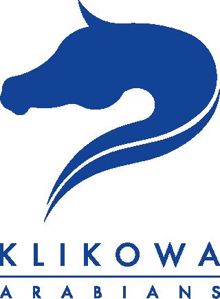 Klikowa Arabians